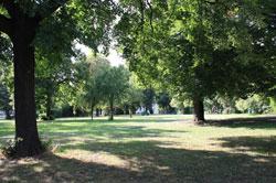 Kinderpark